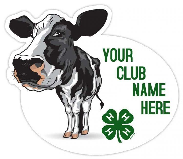 4-h sticker - dairy cow