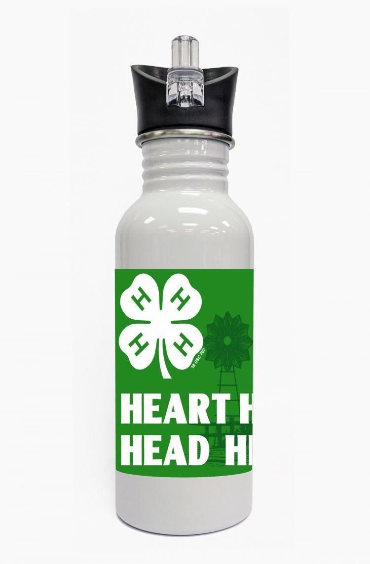 4-h water bottle steel
