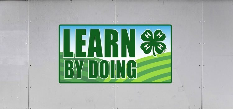 4-H Trailer Graphics