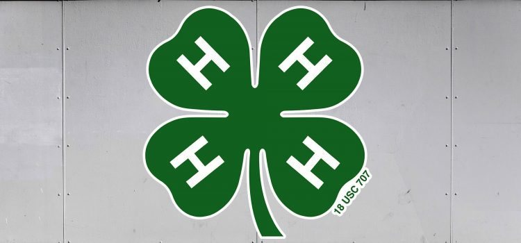 4-H Trailer Graphics - 4-H logo