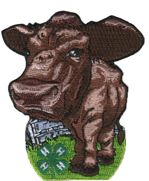 4-H embroidered patch - beef cattle