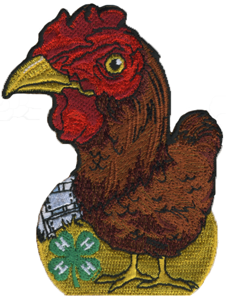 4-H embroidered patch - chicken